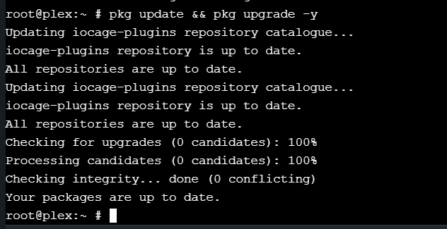 Can't update plex on FreeNAS 11 2   Page 2   iXsystems Community